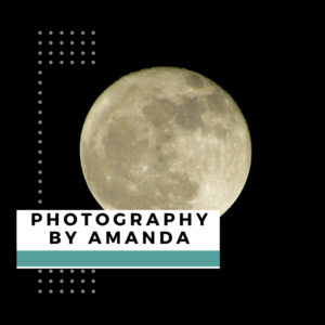 Photography By Amanda